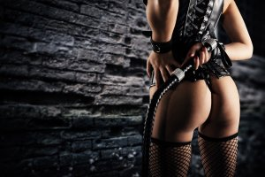dominate woman with a whip